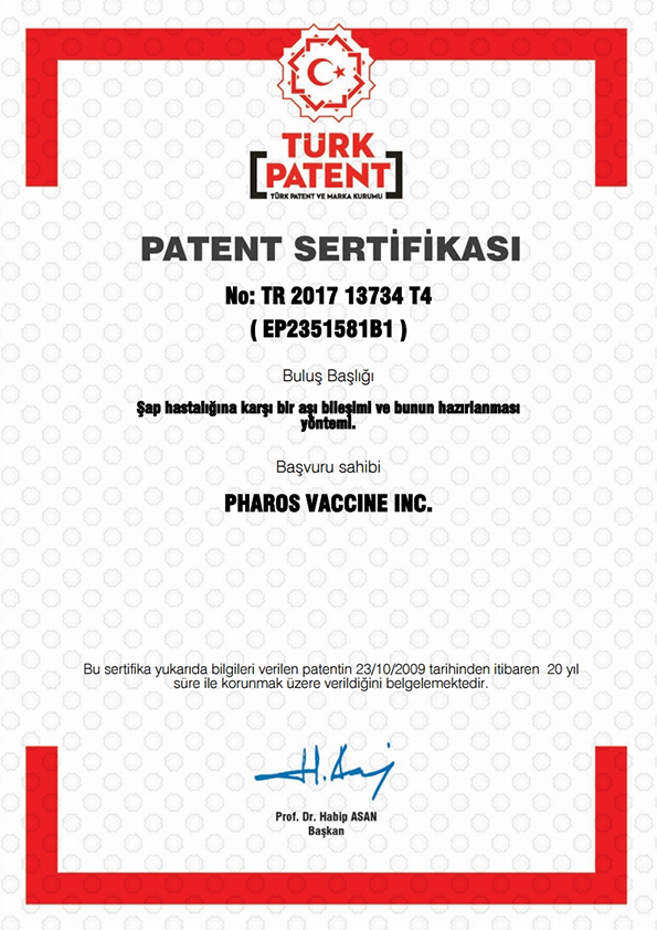 Turkey_PAT Certificate